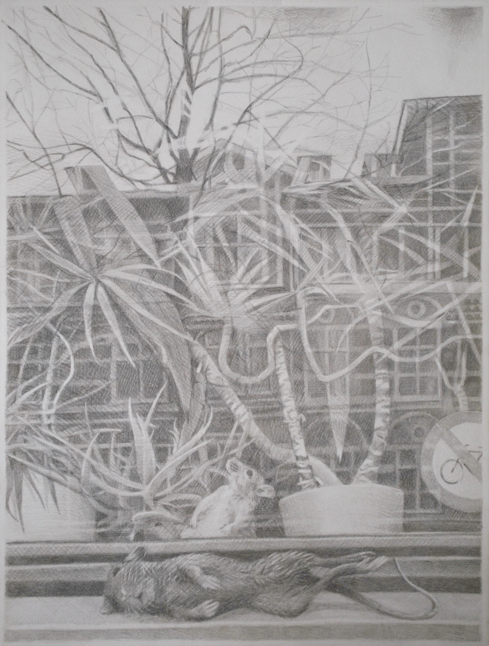 reflection on separation (2018) silverpoint on paper, 40x30cm